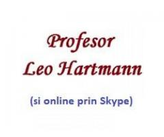 Leo Hartmann - Image 2